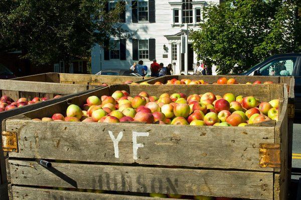 apple squeeze 07KSPRA.048